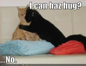 lolcat-valentines-day